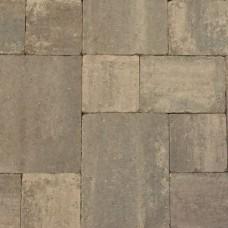 Abbeystones grigio wildverband 6cm