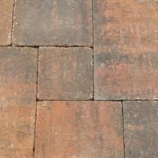 Abbeystones zomerbont wildverband 6cm