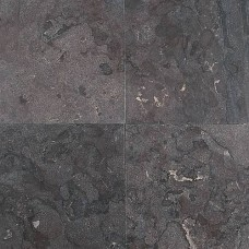 Siam bluestone getrommeld 50x50x2,5cm