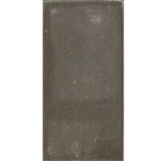 Betontegel grijs 15x30x4,5cm Gardenlux