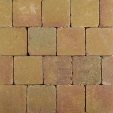 Pebblestones Lizard 15x15x6cm