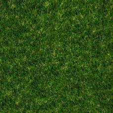 Kunstgras Anfield